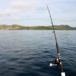 Fishing Rod Weight Rating Explained - Which One Should You Choose?