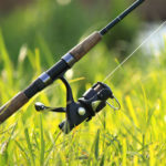 What Are The Top Rod And Reel Combos For Catfish?