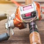 What Are The Parts of a Baitcasting Reel?