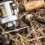 Shimano Sedona Vs. Sahara Reels - What Are The Differences? Which One Should You Buy?